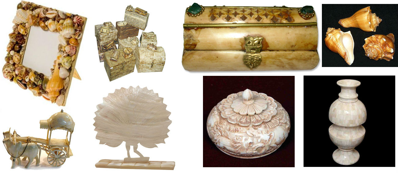Bone and Shell Handicrafts