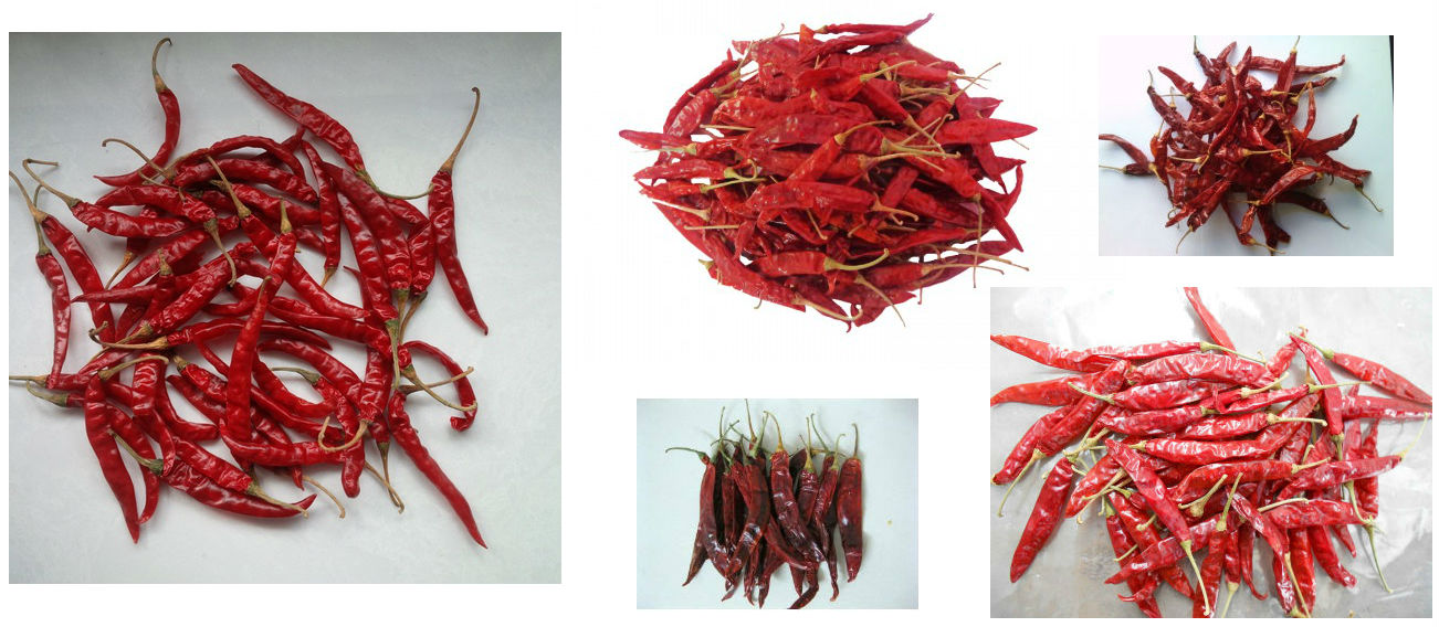 Red Chilly with Stem