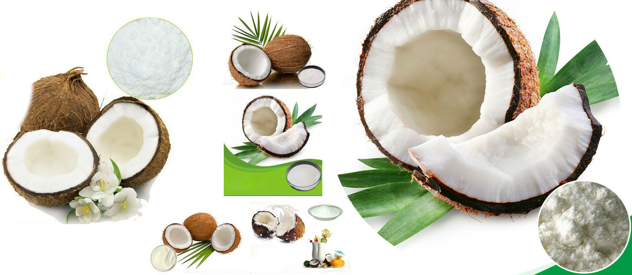Spray Dried Coconut Powder
